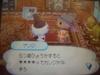 New_006